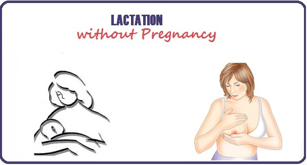 Lactation Without Pregnancy