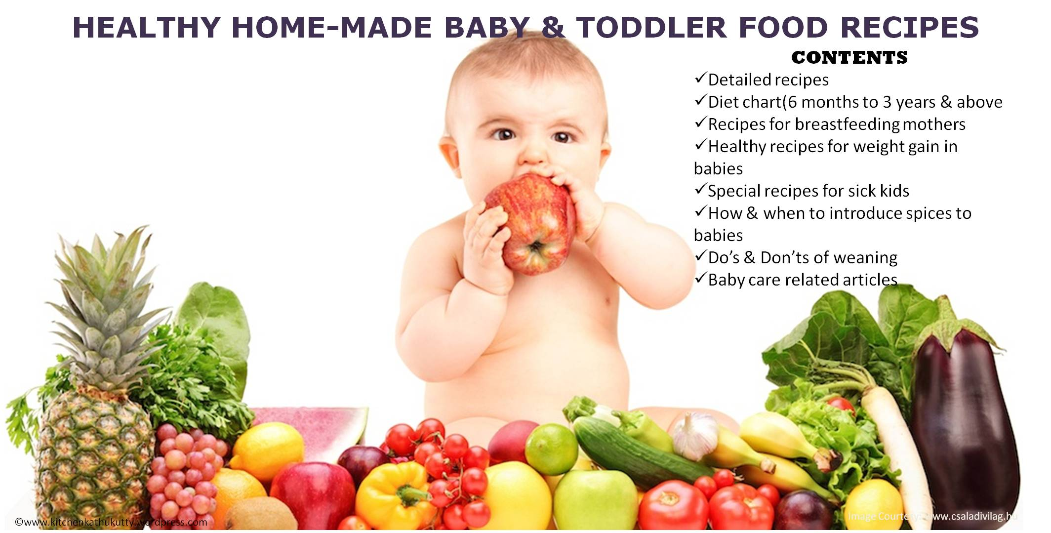 homemade baby food recipes-1